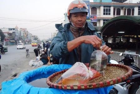 Mỗi túi nilon là 3 chú cá sẵn sàng.