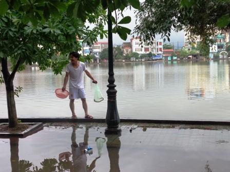 Từ phố đến hồ đều tràn đầy nước,người dân đổ xô đi bắt cá.