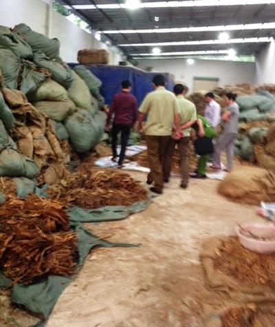 Hàng chục tấn nguyên liệu thuốc lá đang được lưu giữ trong kho hàng của công ty Sao Vàng