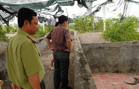 Lực lượng kiểm lâm kiểm tra chuồng trại của một số hộ nuôi cá sấu