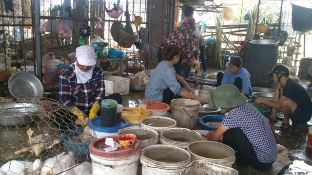 Cảnh giết mổ gia cầm tại chợ đầu mối Thanh Hoá
