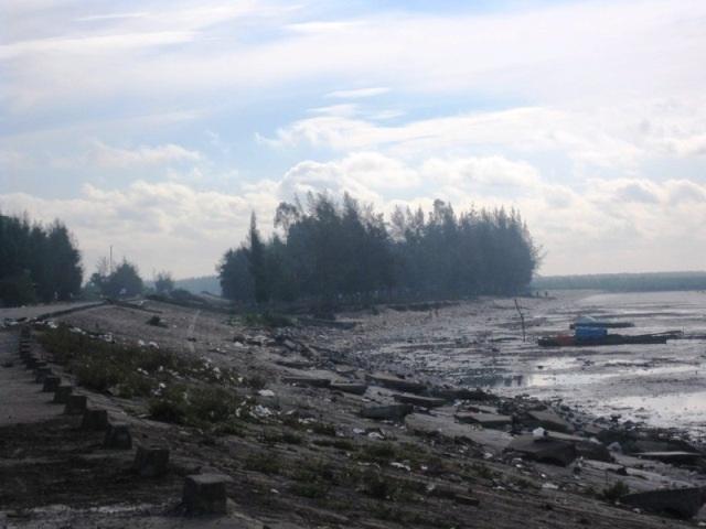 Rừng bị phá nơi điểm xung yếu, bị biển ăn sâu vào chân đê