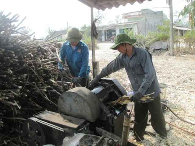 Công đoạn đầu tiên của việc làm mật mía là ép lấy nước