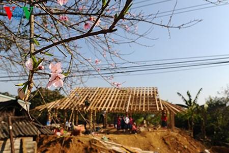 Mùa xuân cũng là mùa những ngôi nhà mới được dựng lên.