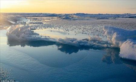 """Cấu trúc phức tạp của """"hoa tuyết"""" được hình thành từ hơi ẩm và muối biển đóng băng."""
