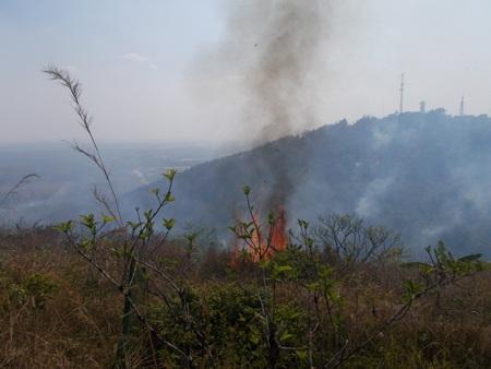 Khu vực cháy rừng ở núi Hàm Rồng gần 2 trạm thu phát sóng