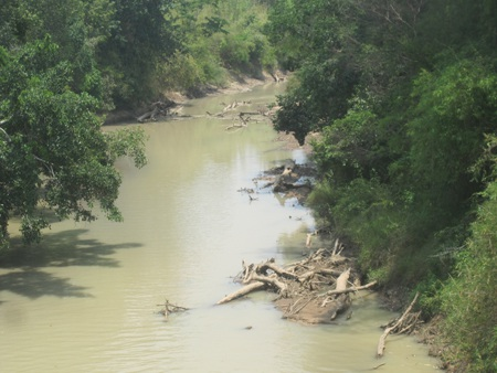Là kiểm lâm nhưng ông Cư cho rằng trách nhiệm rừng bị phá thuộc về UBND xã Hà Tây