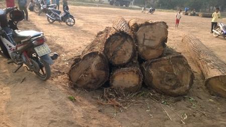 1 xe gỗ người dân làng Kon Sơ Lăl bắt được để làm bằng chứng về phá rừng