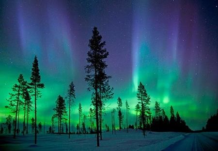 Hiện tượng Bắc cực quang đẹp như cổ tích ở Thụy Điển. (Ảnh: diply.com)