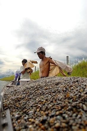 Chùm ảnh: Cào hến trên phá Tam Giang - 6