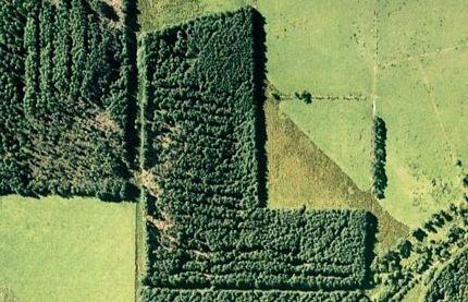 Chùm ảnh: Bảng chữ cái khổng lồ nhìn từ trên không - 12