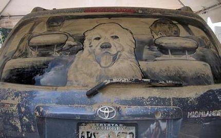 Biến ô tô phủ bụi thành tác phẩm nghệ thuật - 16