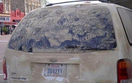 Biến ô tô phủ bụi thành tác phẩm nghệ thuật - 10
