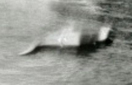 Những bằng chứng về quái vật hồ Loch Ness - 13
