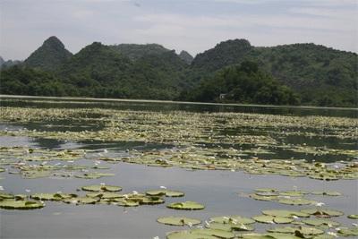 Chùm ảnh: Vẻ đẹp hoang sơ của hồ Quan Sơn - 6