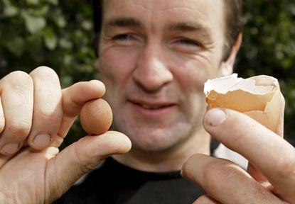 """Trứng """"đẻ"""" ra trứng - 1"""
