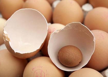 """Trứng """"đẻ"""" ra trứng - 2"""