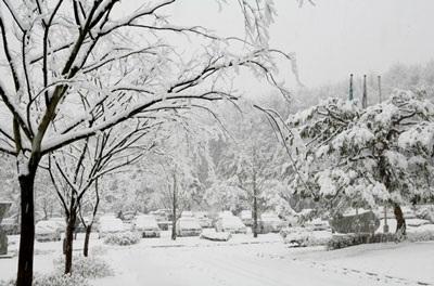 Lãng mạn tuyết xứ Hàn - 4
