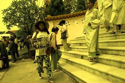 Phản cảm cảnh chèo kéo chim trong hội chùa - 7