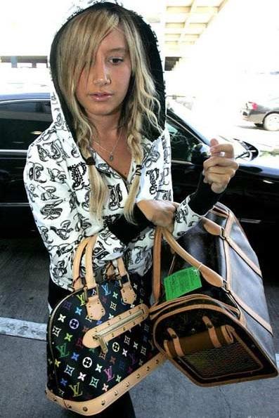 Ngắm bộ sưu tập túi Louis Vuitton của Ashley Tisdale - 15