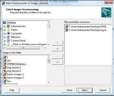 batch-images-3.jpg