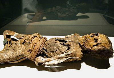 tn_mummies-15.jpg