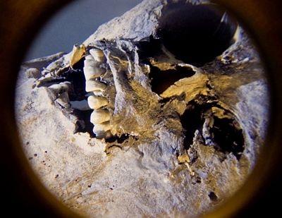 tn_mummies-21.jpg
