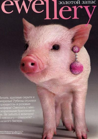 Lợn làm… người mẫu trang sức - 1
