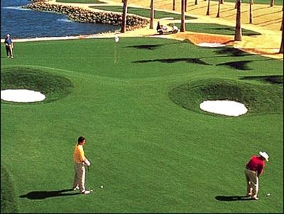 Thủ tướng chỉ đạo lập đoàn kiểm tra quy hoạch sân golf - 1