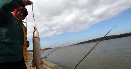 Xuất hiện đe dọa mới từ hồ chất thải bị vỡ ở Hungary - 3