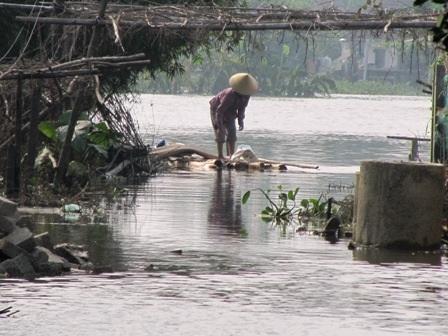 Nguy cơ phụ nữ hóa nông nghiệp, lão hóa nông thôn  - 1