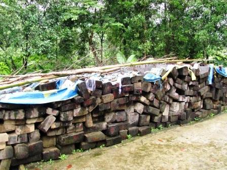 Bất lực nhìn lâm tặc rầm rộ phá rừng - 5
