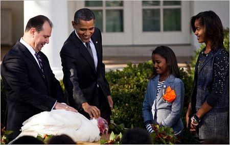 """Tổng thống Obama """"ân xá"""" cho gà tây - 8"""