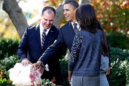 """Tổng thống Obama """"ân xá"""" cho gà tây - 6"""