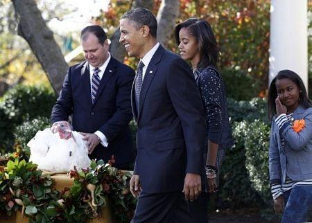 """Tổng thống Obama """"ân xá"""" cho gà tây - 5"""