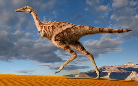Phát hiện loài khủng long một ngón tay - 1