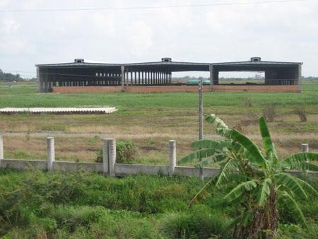 Dự án nhà máy giấy lớn nhất Việt Nam trước nguy cơ bị thu hồi   - 1