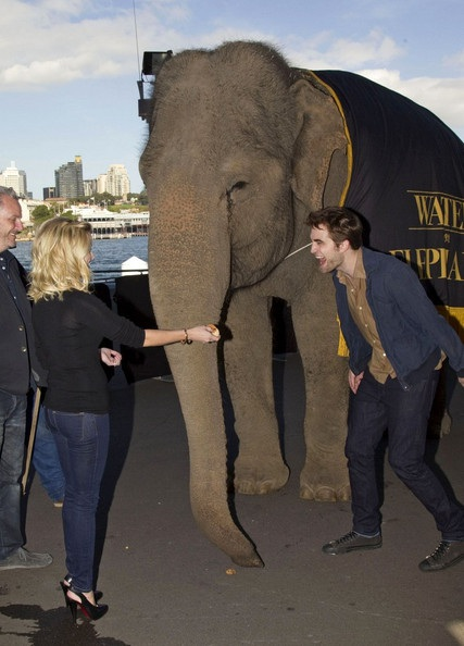 "Robert Pattinson - Reese Witherspoon: ""Đọ dáng"" với voi - 3"
