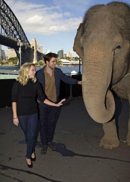 "Robert Pattinson - Reese Witherspoon: ""Đọ dáng"" với voi - 9"