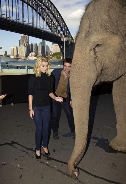 "Robert Pattinson - Reese Witherspoon: ""Đọ dáng"" với voi - 10"