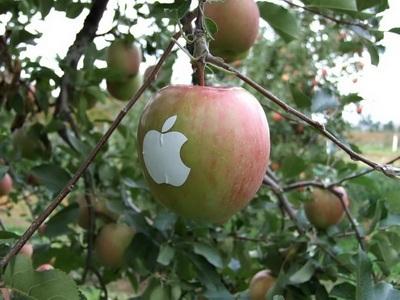 Chùm ảnh: Sáng tạo... cùng logo quả táo của Apple - 2