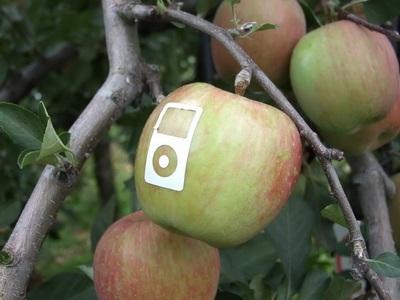 Chùm ảnh: Sáng tạo... cùng logo quả táo của Apple - 3