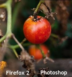 Những bí ẩn thú vị nhất trong Firefox 3 (phần 1) - 2