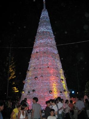 TPHCM rực rỡ sắc màu đêm Giáng sinh - 6