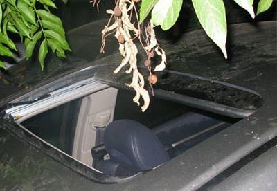 """""""Giải cứu"""" xe Civic rơi xuống sông Tô Lịch  - 5"""