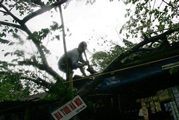 """Thừa Thiên Huế sẵn sàng """"đón"""" bão! - 3"""