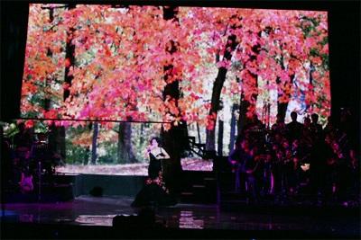 Live show Mỹ Lệ Symphony: Ấn tượng!  - 12