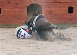 Một VĐV cưỡi ngựa tử nạn tại ASIAD 15 - 3