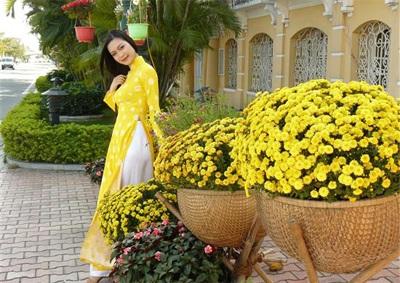 Chùm ảnh Hoa hậu Thuỳ Dung rực rỡ trong nắng xuân - 10