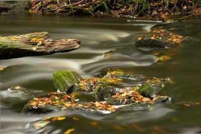 40 bức ảnh tuyệt đẹp nhờ hiệu ứng Motion Blur - 32